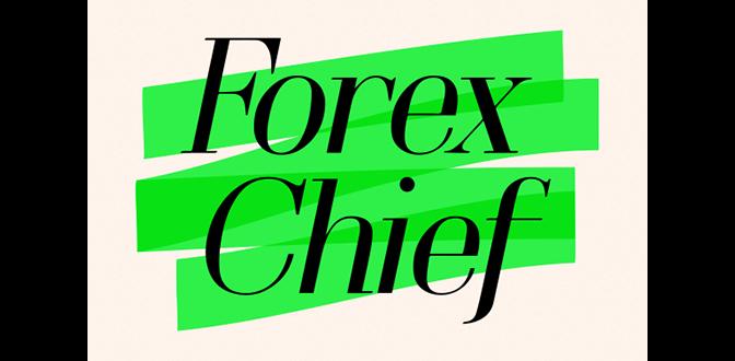 forexchief обзор 2020